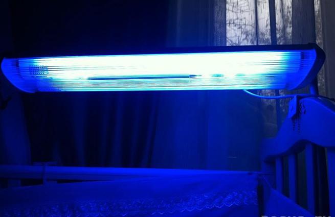 прокат лампы для лечения желтухи